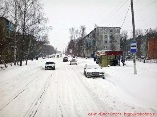 Щёкино зимой 207