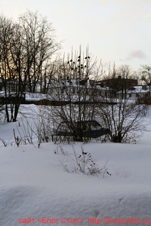 Щёкино зимой 215