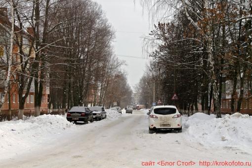 Щёкино зимой 8