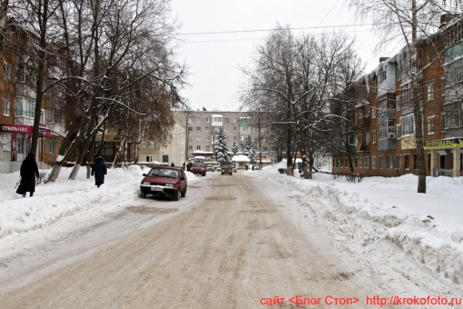 Щёкино зимой 16