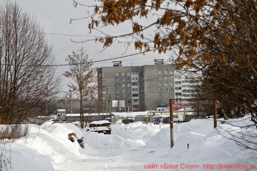Щёкино зимой 49