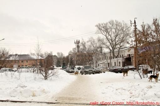 Щёкино зимой 73