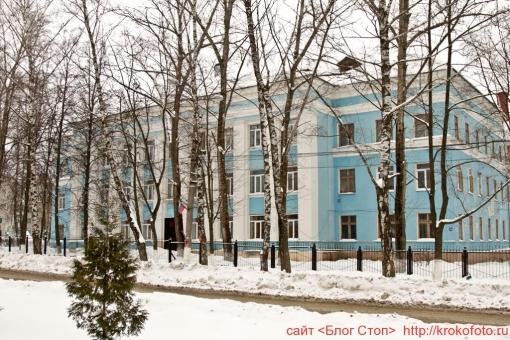 Щёкино зимой 94
