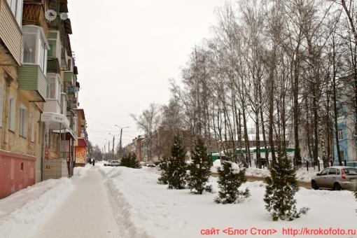 Щёкино зимой 95
