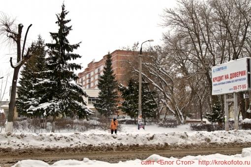 Щёкино зимой 108