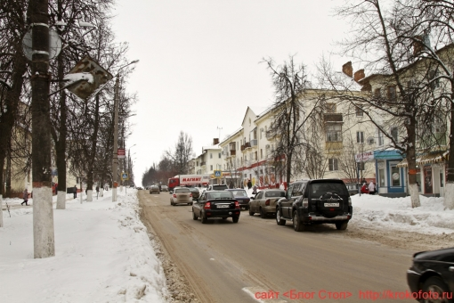Щёкино зимой 118
