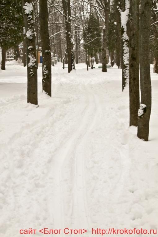 Щёкино зимой 130