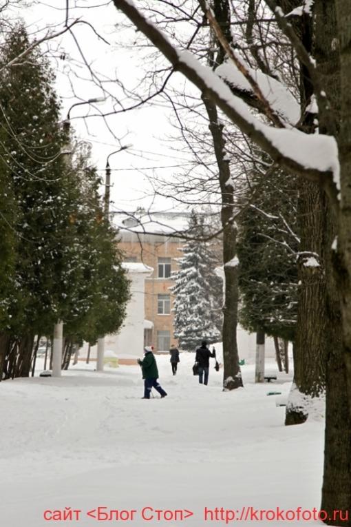 Щёкино зимой 133