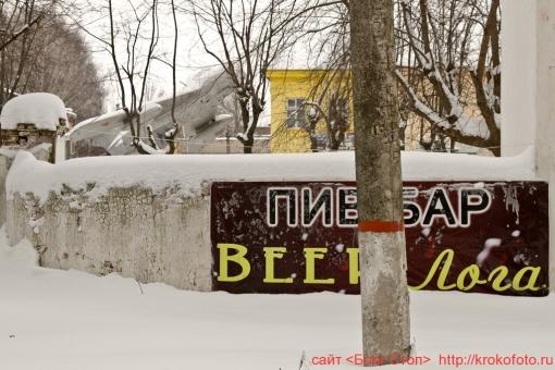 Щёкино зимой 139