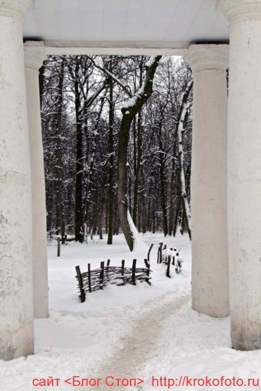 Щёкино зимой 143