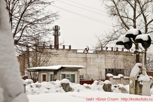 Щёкино зимой 147