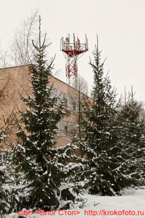 Щёкино зимой 185