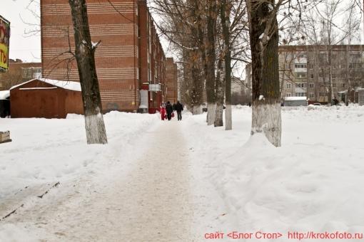 Щёкино зимой 204