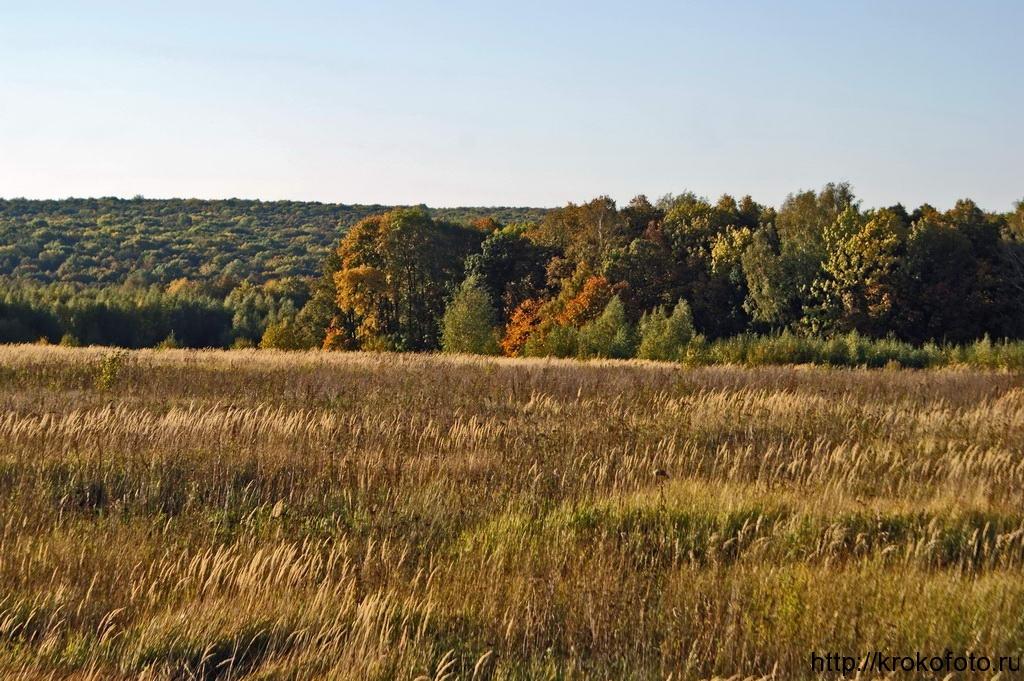осенние пейзажи 2