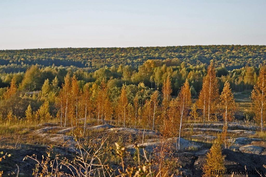 осенние пейзажи 7