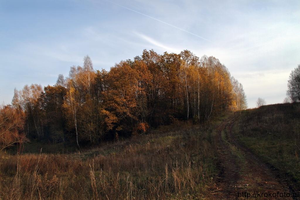 осенние пейзажи 18