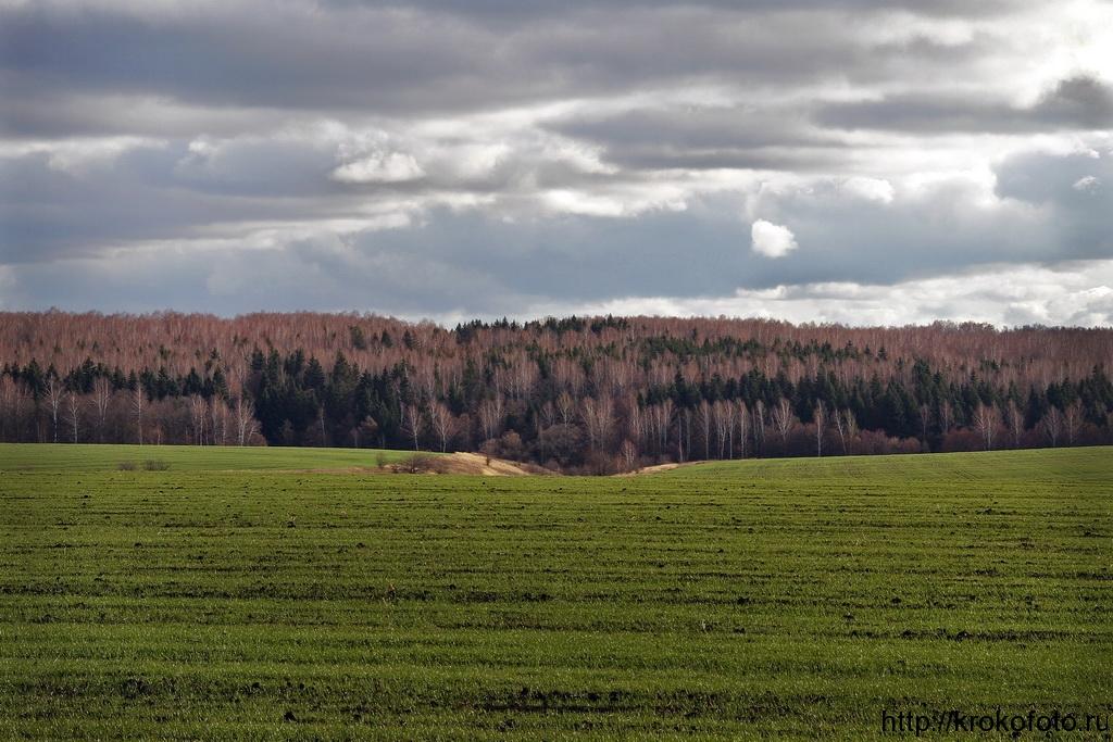 осенние пейзажи 23