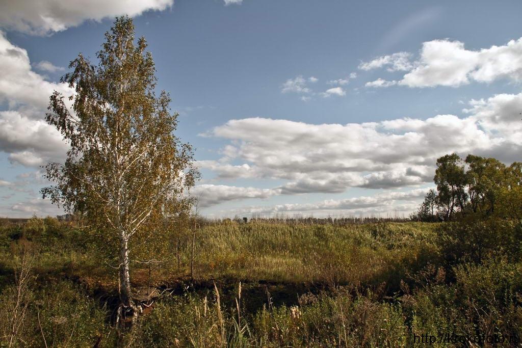 осенние пейзажи 33