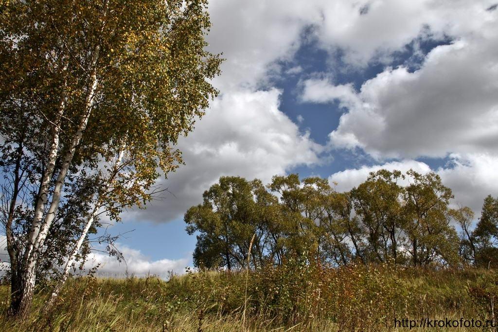 осенние пейзажи 34