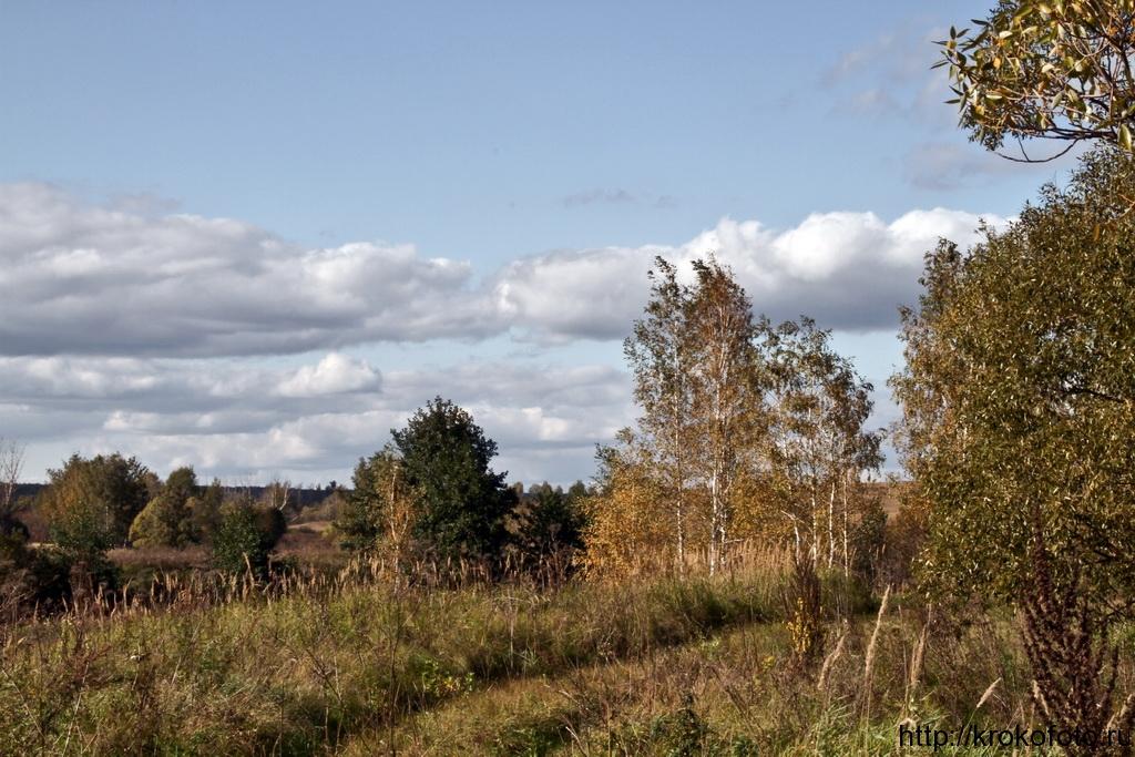 осенние пейзажи 36