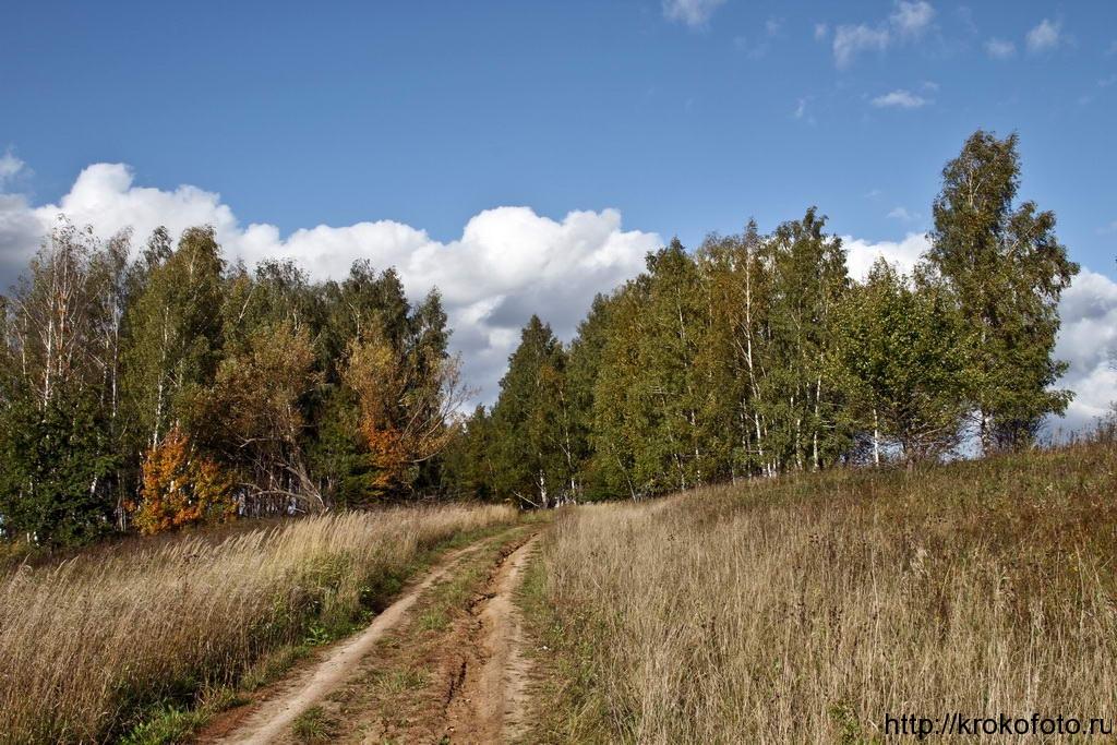 осенние пейзажи 38