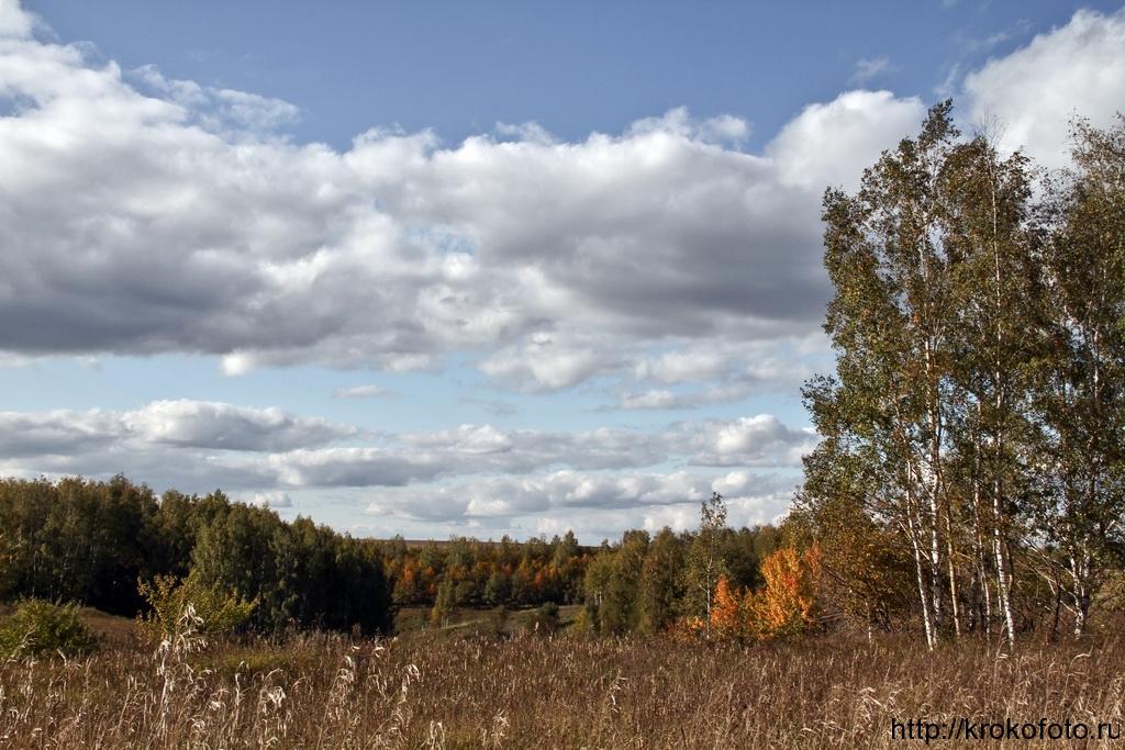 осенние пейзажи 39