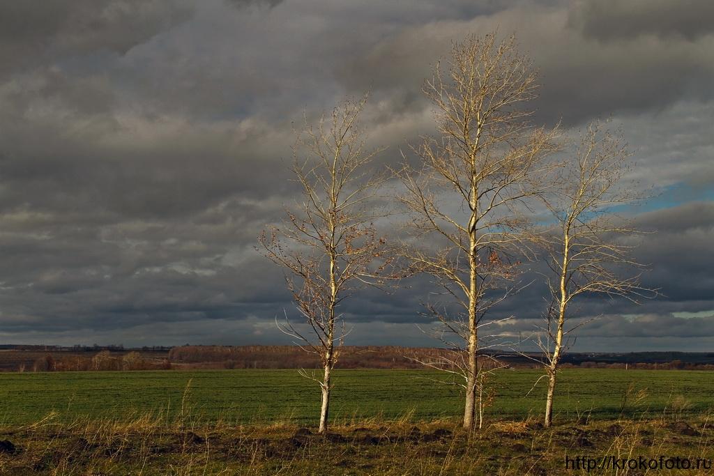 осенние пейзажи 40
