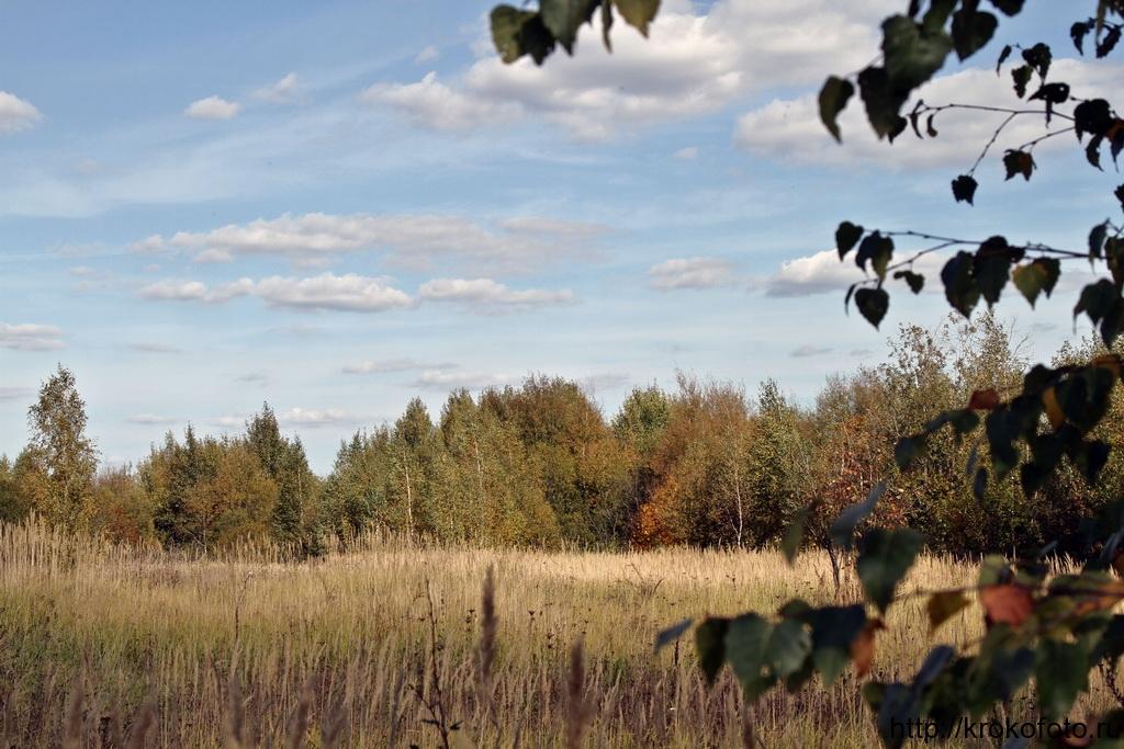 осенние пейзажи 42