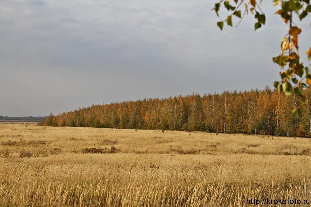 осенние пейзажи 47