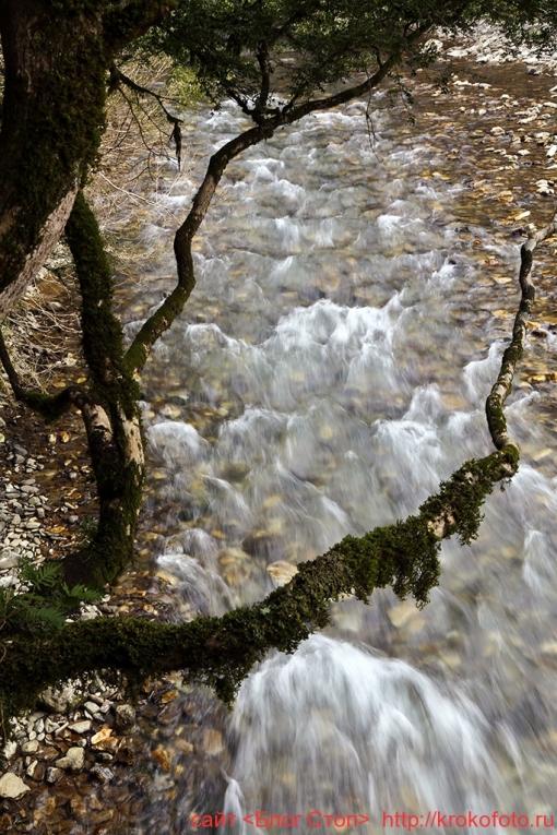 река Хоста 003