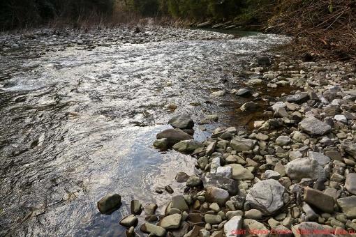 река Хоста 009