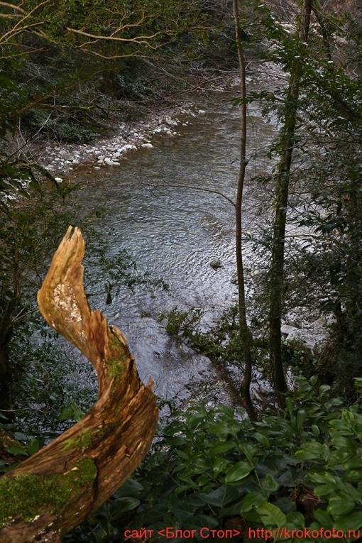 река Хоста 017