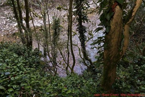 река Хоста 018