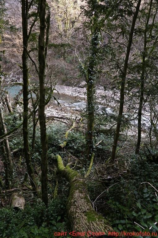 река Хоста 024