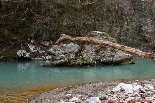 река Хоста 027