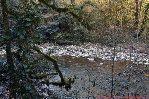 река Хоста 030