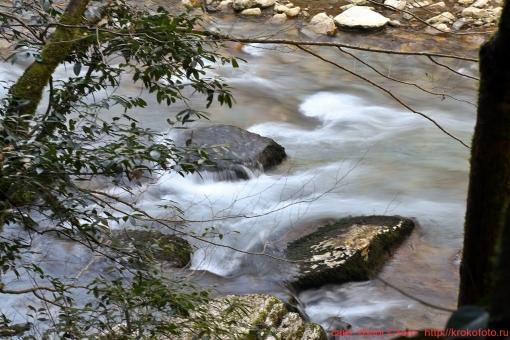 река Хоста 031