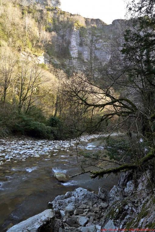 река Хоста 032