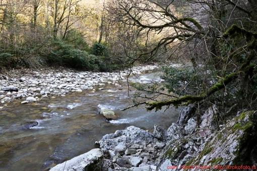 река Хоста 033