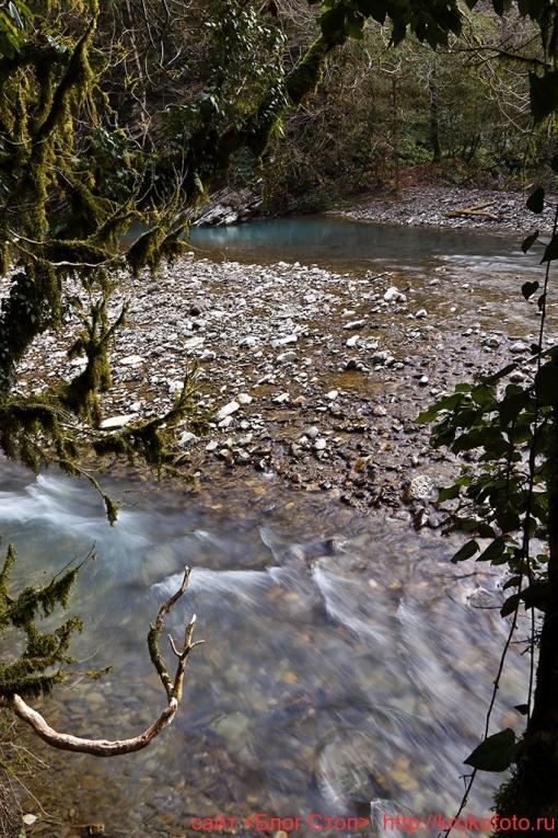 река Хоста 041