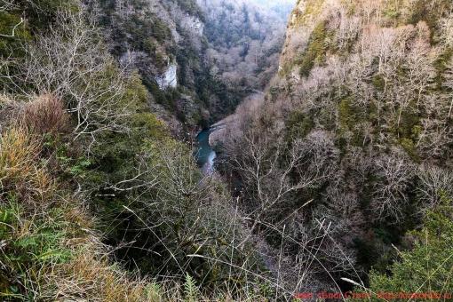 река Хоста 043