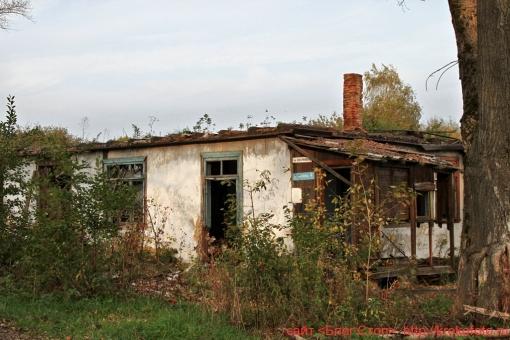 Щёкинский район 35