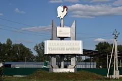 Тульская область 13