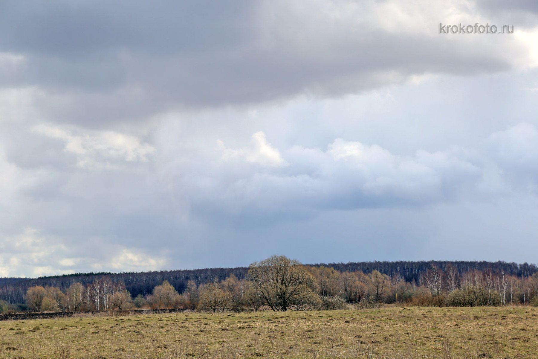 весенние-пейзажи-59