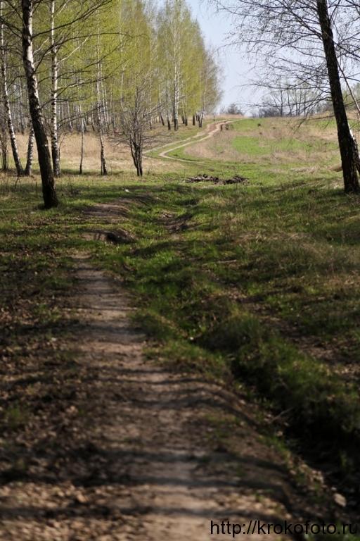 весенние пейзажи 33