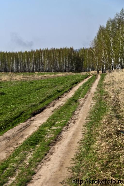весенние пейзажи 34