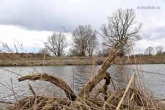 весенние-пейзажи-58