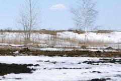 весенние пейзажи 24