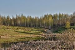 весенние пейзажи 37