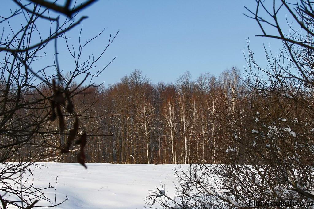 зимние пейзажи 8